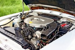 Engines are all robust if maintained properly. Sixes more frugal, V8s more enjoyable!